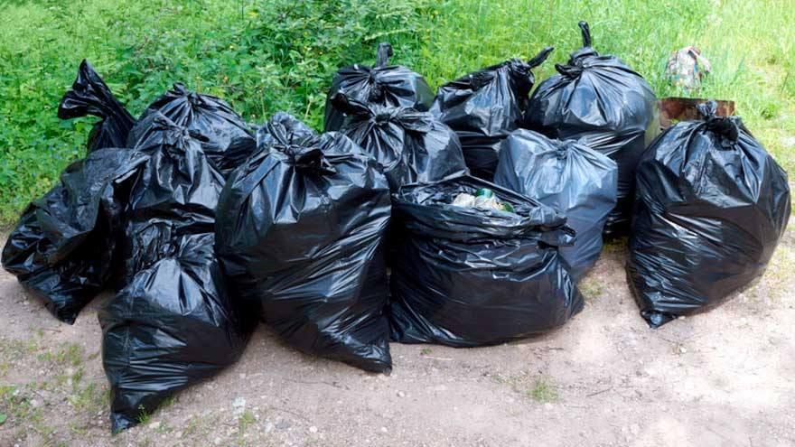 Итоги чемпионата по спортивному сбору мусора в Ленинском районе